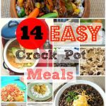 14 Easy Crock Pot Meals for the Whole Family