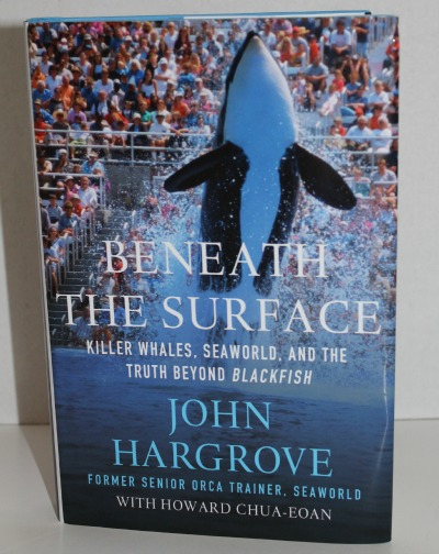 Beneath the Surface…And the heart