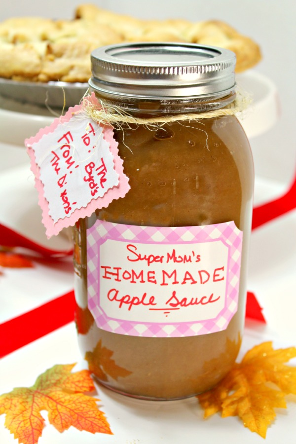 Apple Sauce SCD Recipe