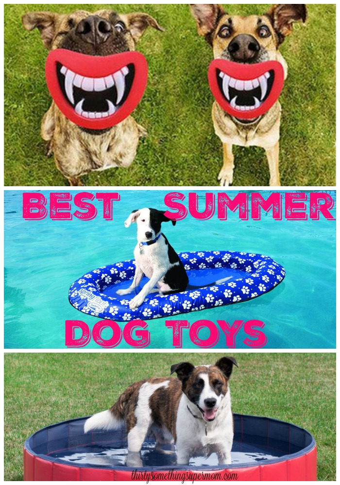 Best Summer Dog Toys