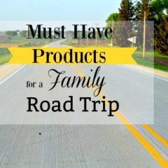 Road Trip Essentials for Family Travel